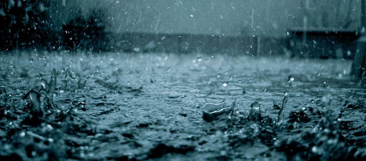 O que é chuva ácida e suas consequências