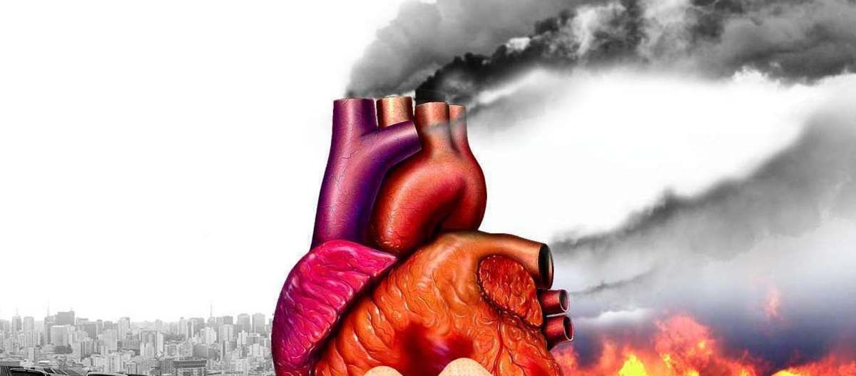 Carga de poluição ao coração