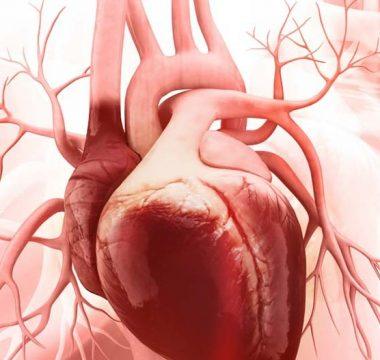 Riscos da poluição do ar para o coração