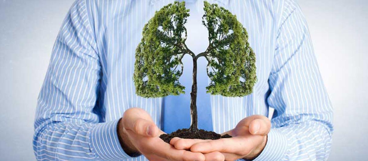 Mudança de hábitos para renovação de ar